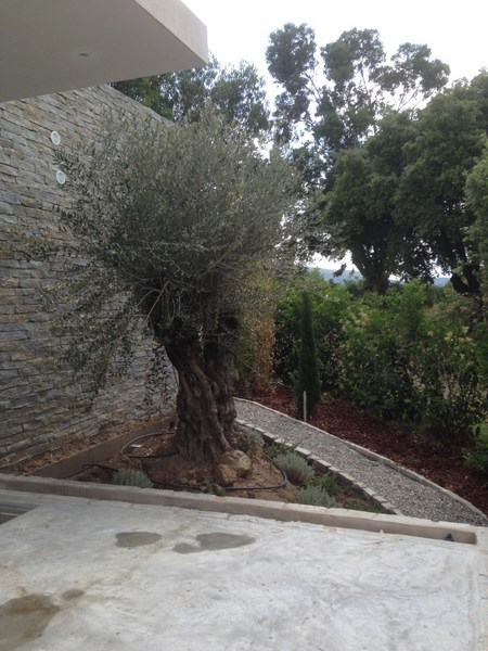 Villa à louer à Pinarello avec terrasse